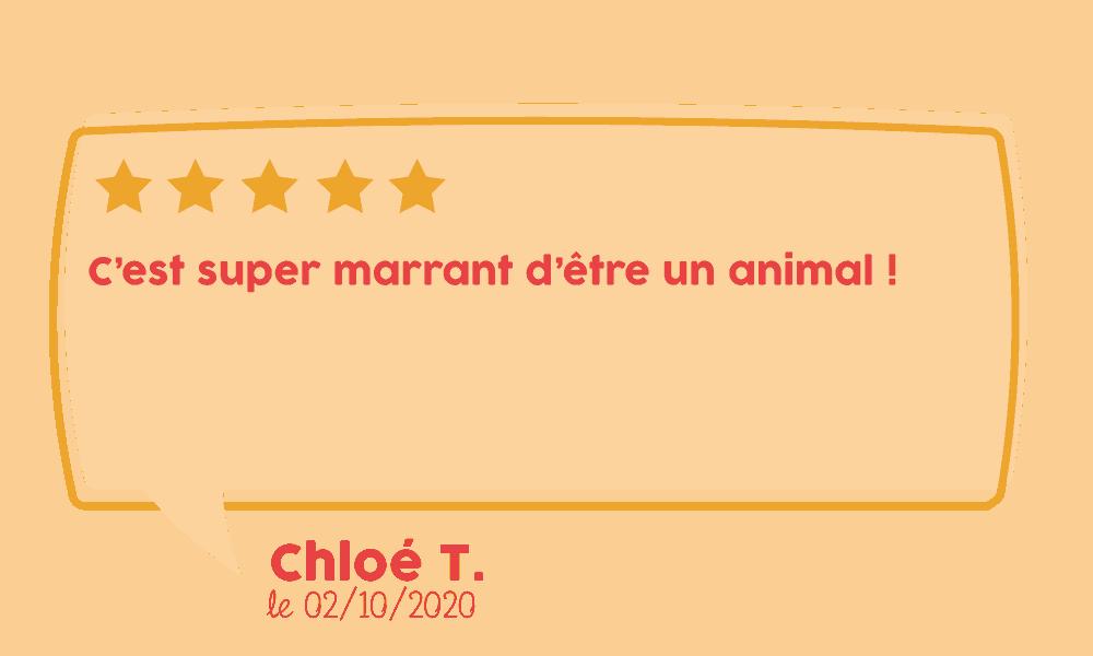 Avis Chloé
